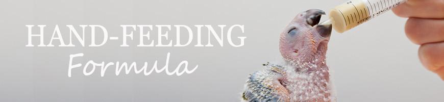 Hand Feeding Formula for Birds | Petsfella