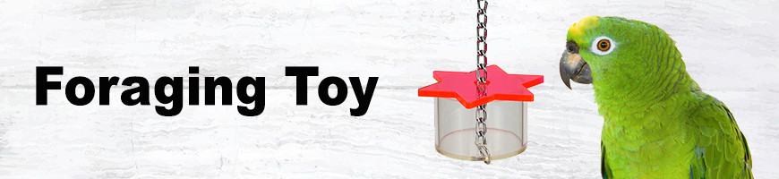 Foraging Toys for Birds and Parrots   Petsfella.com