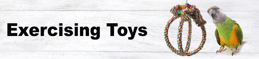 Exercising Toys for Birds and Parrots | Petsfella.com