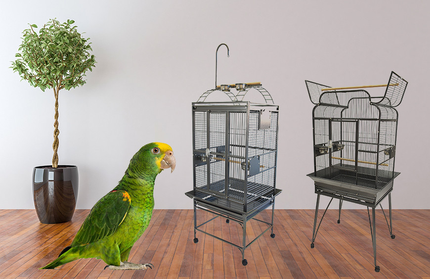 Pros & Cons of 2 Popular Types of Bird Cages